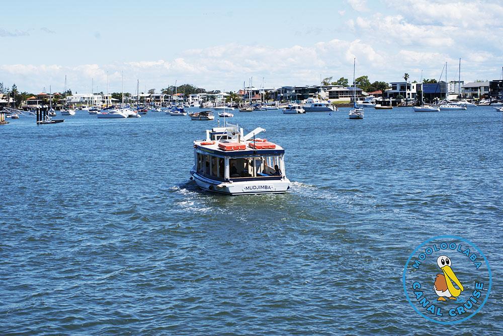 Mooloolaba Canal Cruise - The Boat