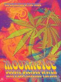 M908 › 4/20/16 420 Gathering of the Tribe, Slim's, San Francisco, CA