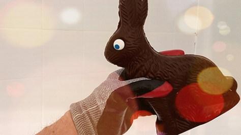 Photo of chocolate Easter Bunny