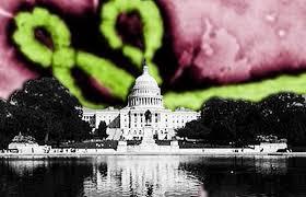 ebola white house