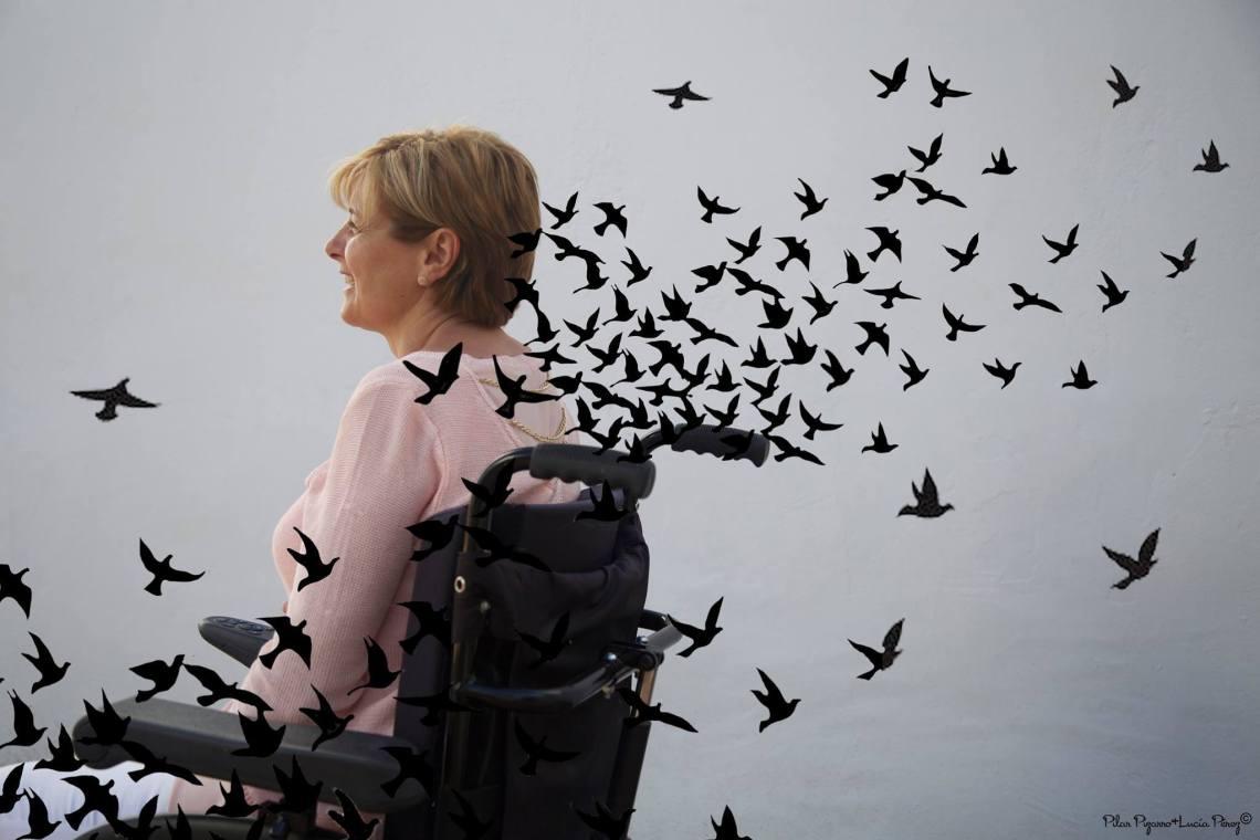 Conclusiones. La silla de ruedas. Pilar Pizarro y Lucía Pérez.