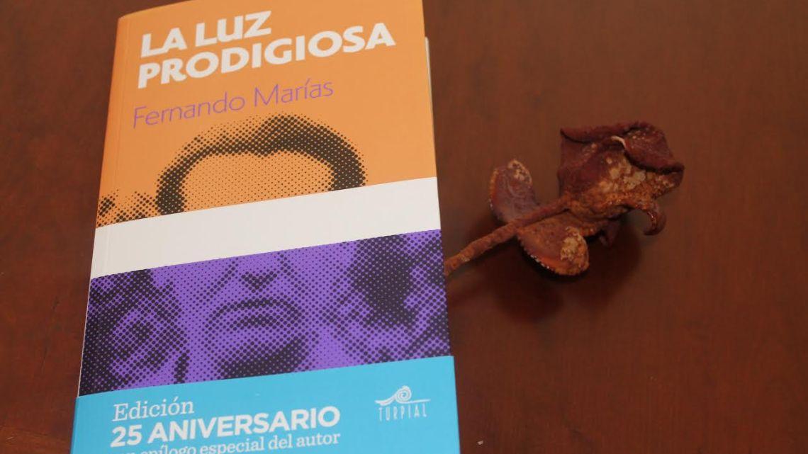 La luz prodigiosa, de Fernando Marías, 25 años después 1