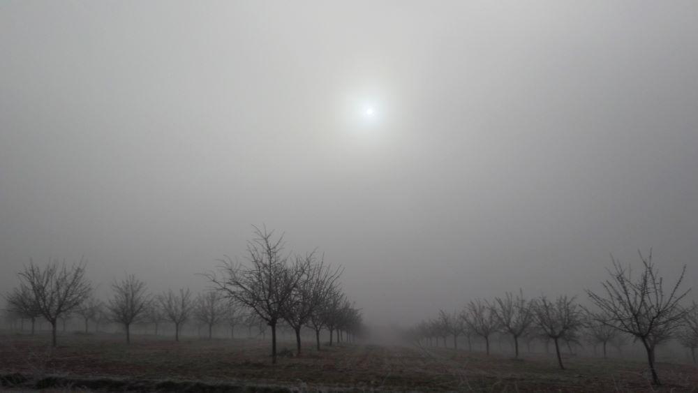 Fotografía de Teresa Suárez