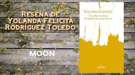 Un cobertizo lleno de significados sospechosos, de Yolanda Castaño 1