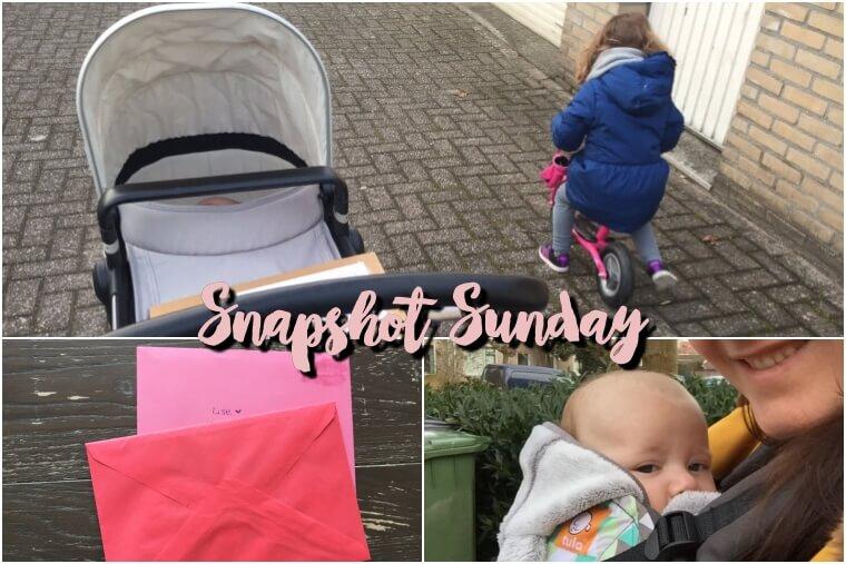 Snapshot Sunday #23