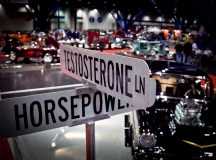 Low Testosterone in Males