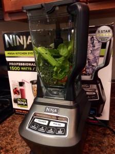 Ninja 1500 watt mega kitchen system box blender raw vegetables in container