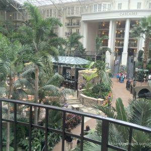 Gaylord Opryland Resort Cascades Atrium Greenery Waterfalls Nashville Hotel