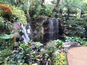 Gaylord Opryland Resort Hotel Nashville Atrium Garden Waterfall Scenic Plants Greenery