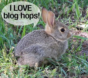 rabbit likes blog hops