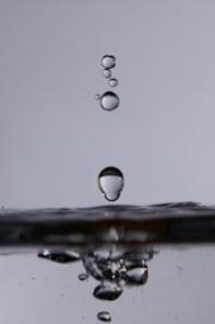 Druppelfotografie Druppel Waterdruppel Flitser Cactus