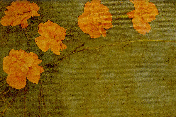 Gratis Hoge Resolutie Texture en Achtergrond Bestanden