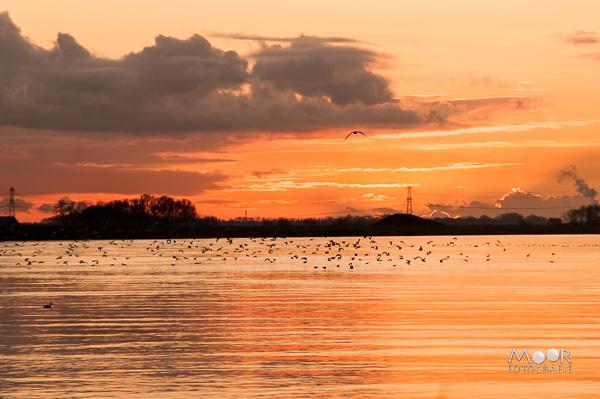 Woordloze Woensdag Zonsondergang Merwede Werkendam