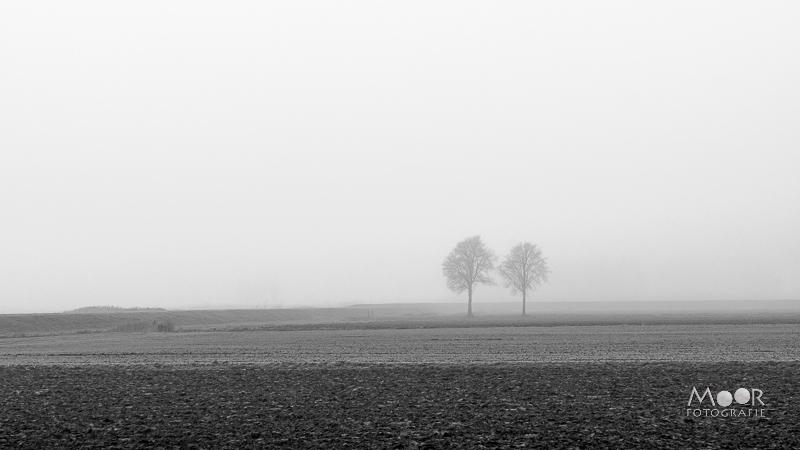 Woordloze Woensdag Minimalistisch Landschap in Zwart-Wit