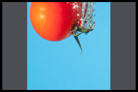 Resultaten Kees Jansen Workshop Strobist Fotografie