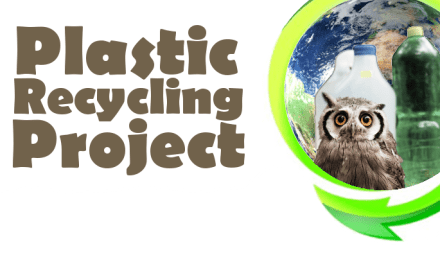 Plastic Recycling Project – Start Today!