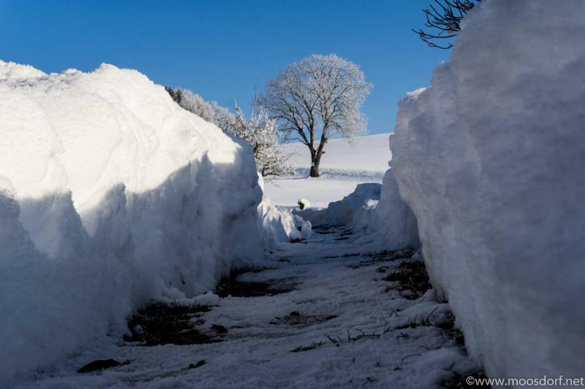 Wintersport-Ort Moosdorf - eure Winterbilder sind gefragt!