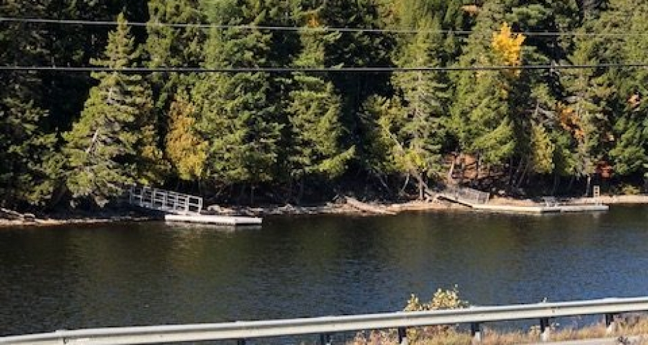 Moose River View
