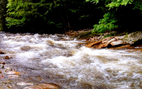 Small Tributary - still moving fast