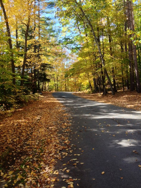 Fall Road, Brant Lake NY