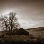 Little House on, The Palouse