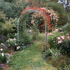 House Garden Arches