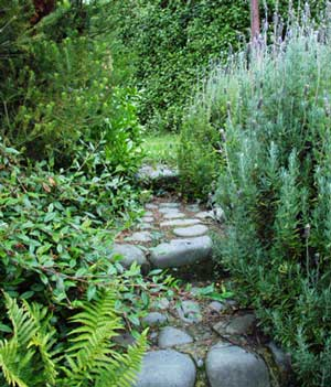 https://i2.wp.com/www.mooseyscountrygarden.com/garden-paths/laundry-path-stone-lavender-ferns.jpg