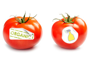 organic-vs-regular