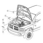 Diagram 1997 Dodge Ram 1500 Engine Diagram Full Version Hd Quality Engine Diagram Scamdiagram Cooking4all It
