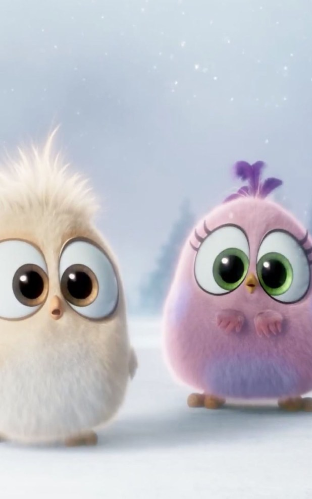 Cute Angry Birds Free Hd Mobile Wallpapers
