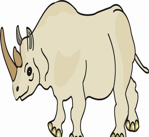 rhinoceros coloring pages for kids to color and print