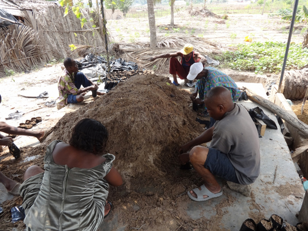 Families fill bags with compost in Agbozume Village