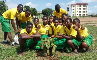 Pictures of The First School Selected Planting 300 Mahogany Trees
