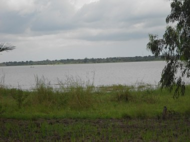 A RIVER NEAR OUR NURSERY  THAT WILL BE PUMP TO WATER MORE AGROFORESTRY SEEDLINGS