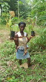 APENTENG WIFE HOLDING THEIR SEEDLINGS READY FOR PLANTING