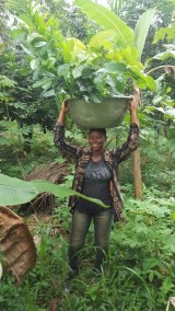 ATSU DAUGHTER CARRYING SOME OF THIER SEEDLINGS TO BE PLANTED
