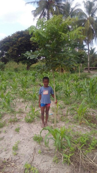 daniel-with-tree-which-is-only-one-year-old