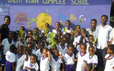 Great Vision Complex School Has Planted 300 Trees