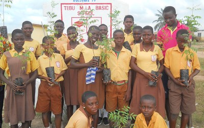 Tabu Municipal Assembly Basic School Planted 800 Trees