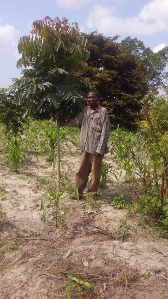 mr-mensah-with-his-trees
