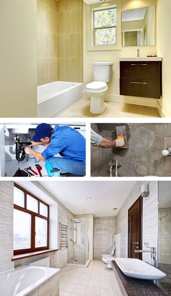 morel renovation