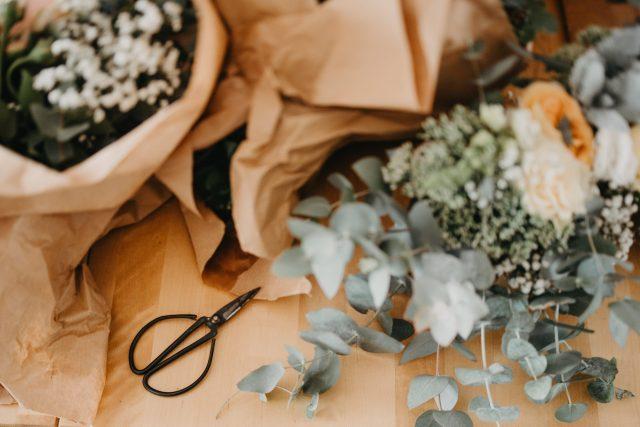 eukaliptus i crne škare na stolu