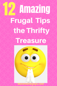 Amazing Frugal Tips the Thrifty Treasure