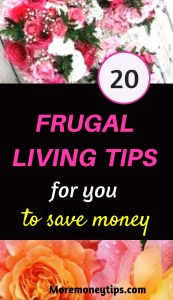 20 frugal living tips for you.