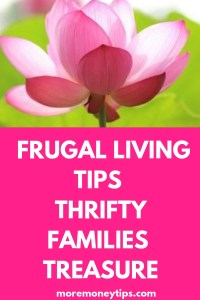 Frugal Living Tips Thrifty Families Treasure