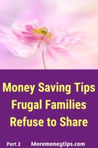 Money Saving Tips Frugal Families Refuse to Share
