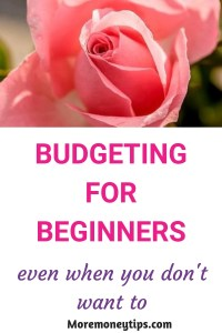 Budgeting for Beginners even when you don't want to
