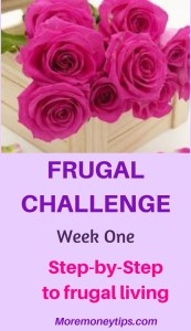 Frugal Challenge week 1. Step-by-step to frugal living