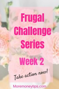 Frugal Challenge Series Week 2 Take action now
