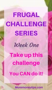Frugal Challenge Series. Take up this challenge. You can do it.
